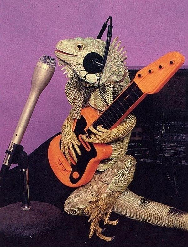Photo of Recording Artist
