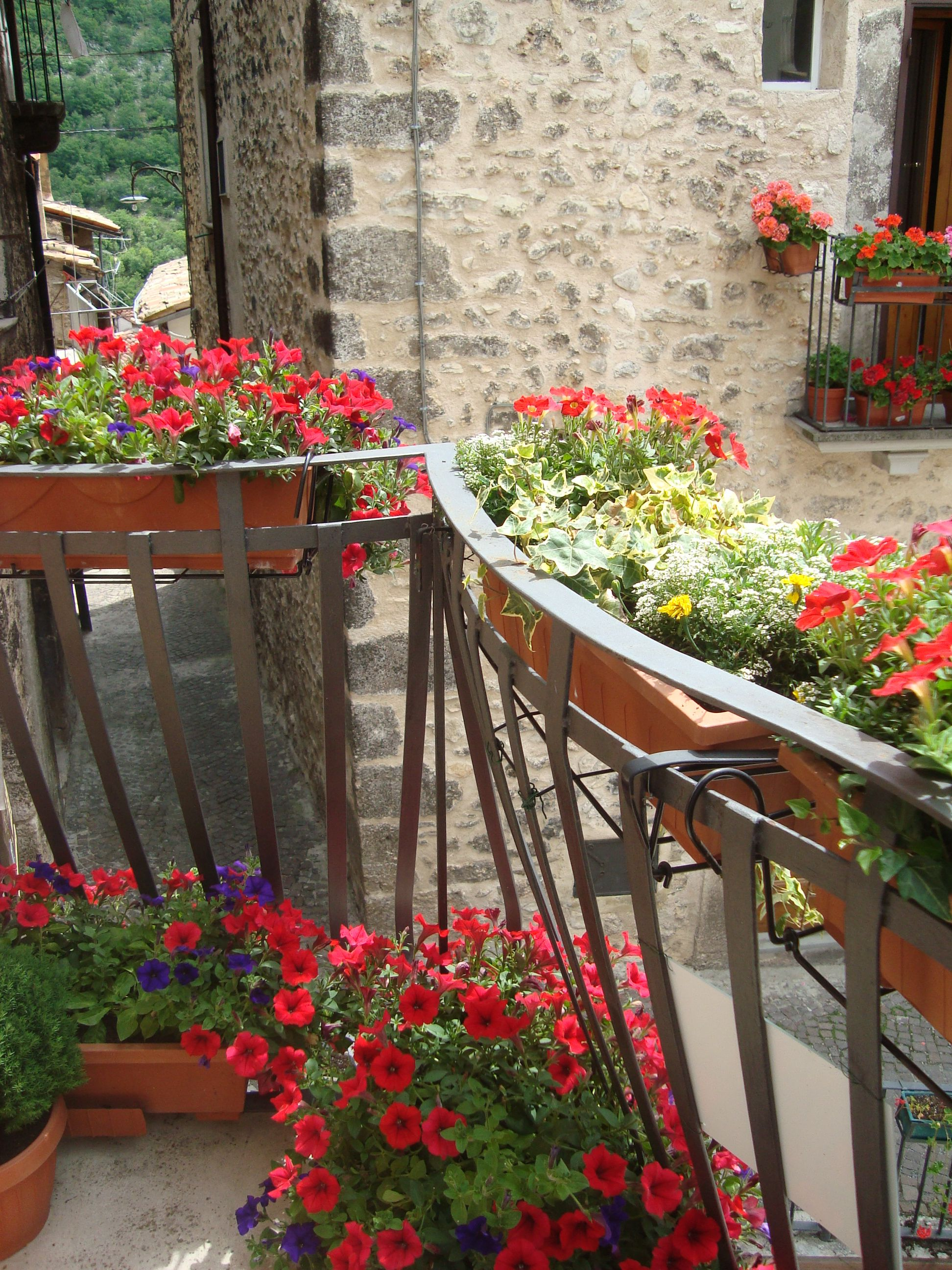 Fiori sul balcone (con immagini) Fiori, Balconi