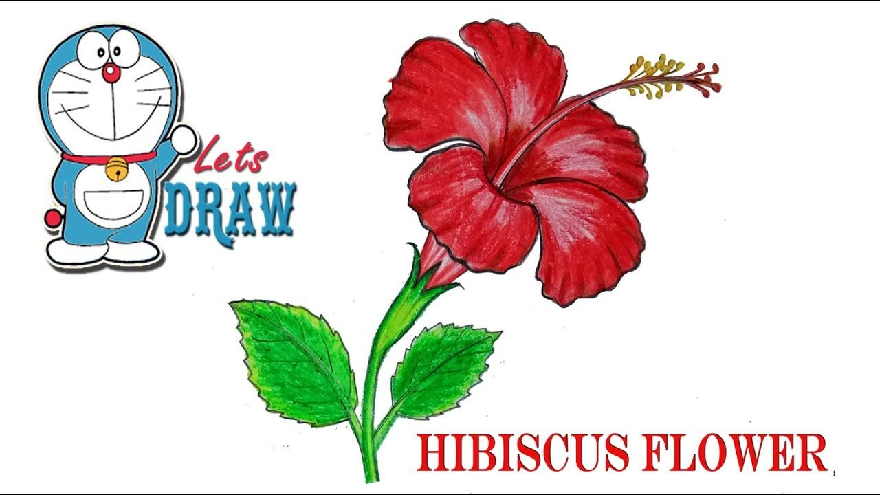 How To Draw A Hibiscus Flower Step By Step Very Easy Youtube Simple Flower Drawing Flower Drawing Botanical Flower Art