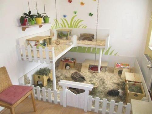 meerschweinchenheim. Black Bedroom Furniture Sets. Home Design Ideas