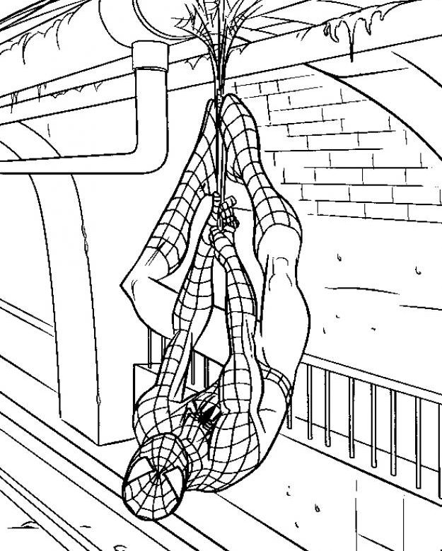 Spiderman Hanging Head Down Coloring Pages Spiderman Coloring Cartoon Coloring Pages Captain America Coloring Pages