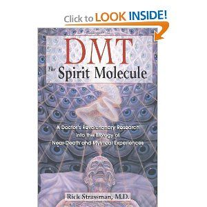 DMT: The Spirit Molecule: A Doctor's Revolutionary Research.