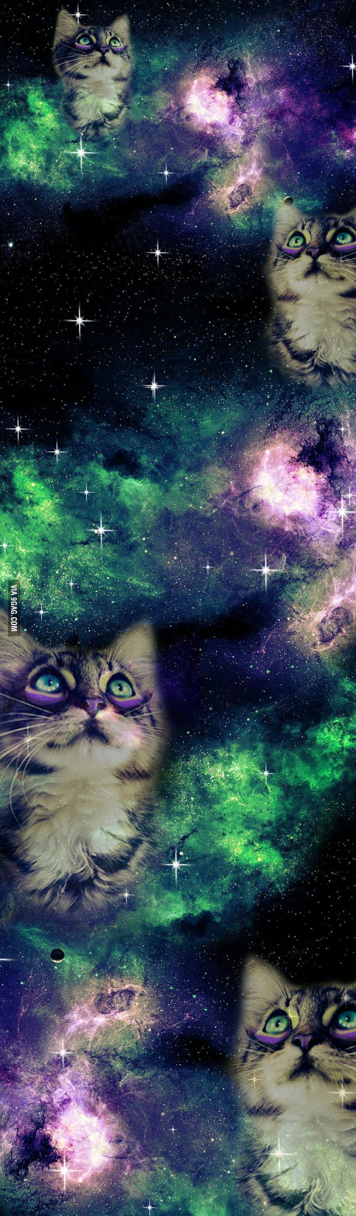 Yaaas Galaxy Cat Cat Wallpaper Galaxy Cat Cat Background