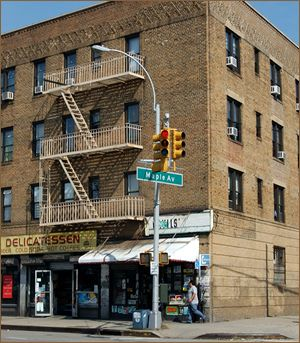 Maple Avenue Apartments Flushing Queens Ny Nyc
