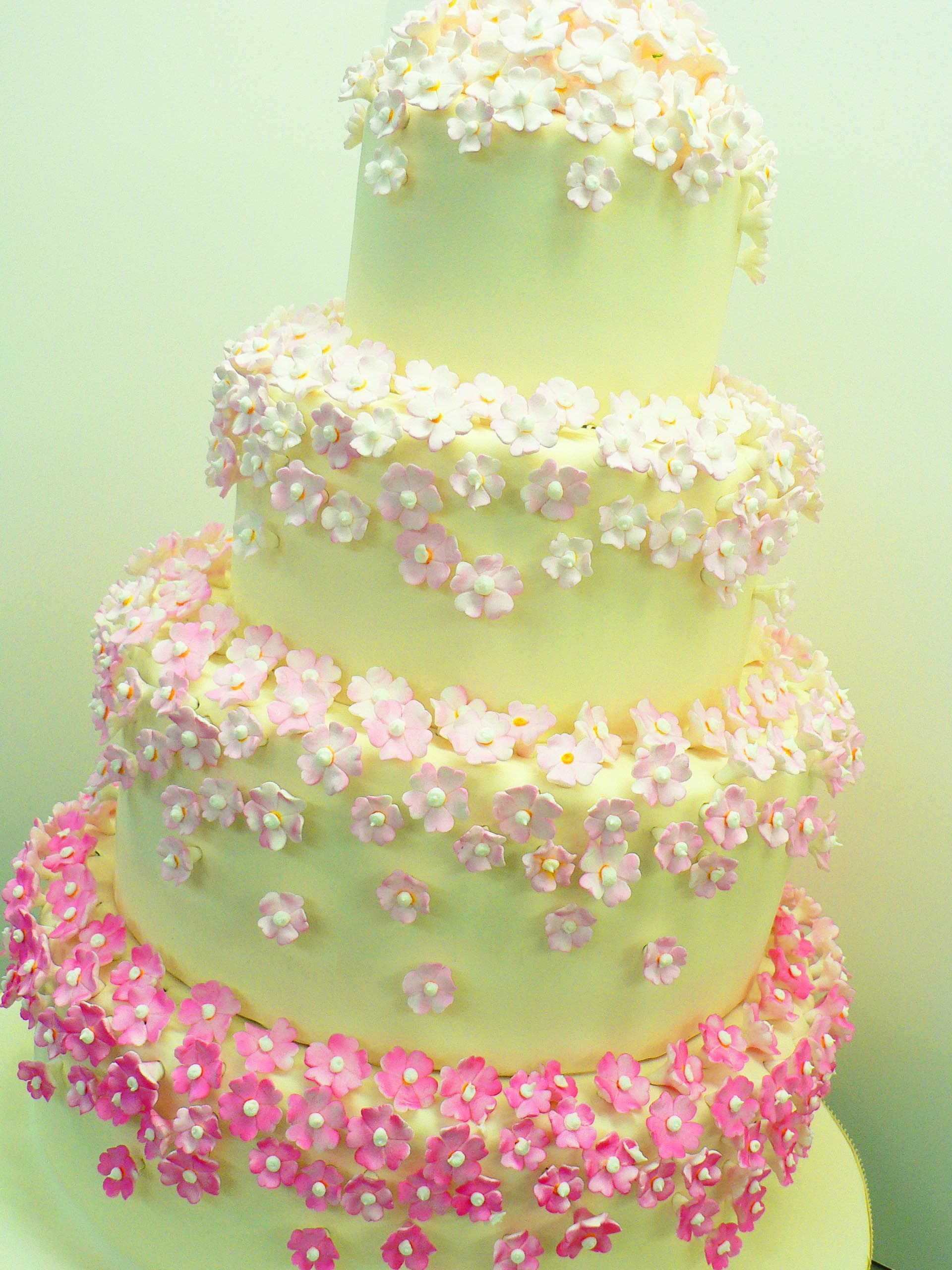 Pink Ombre Cherry Blossom | Wedding cakes and wedding cakes ...