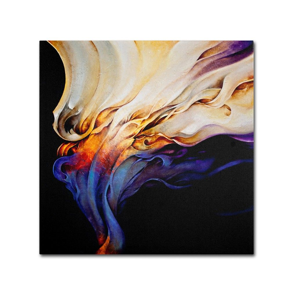 Evoke By Cody Hooper Ready To Hang Canvas Wall Art 35 X35 Multi Colored Abstract Art Canvas Art Prints