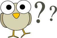 owl question