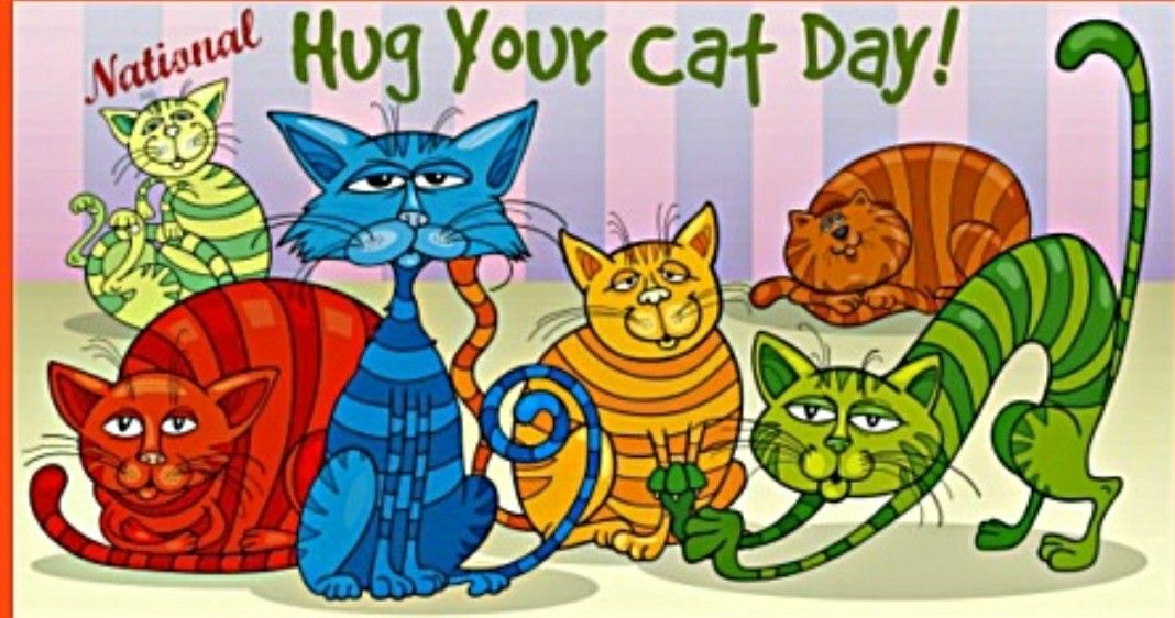 national hug your cat day (With images) Cat clipart