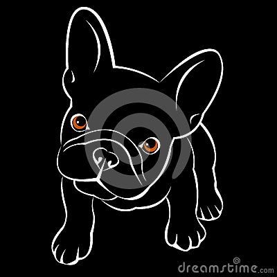 Bulldog Dog Animal French Vector Illustration Pet Breed Cute