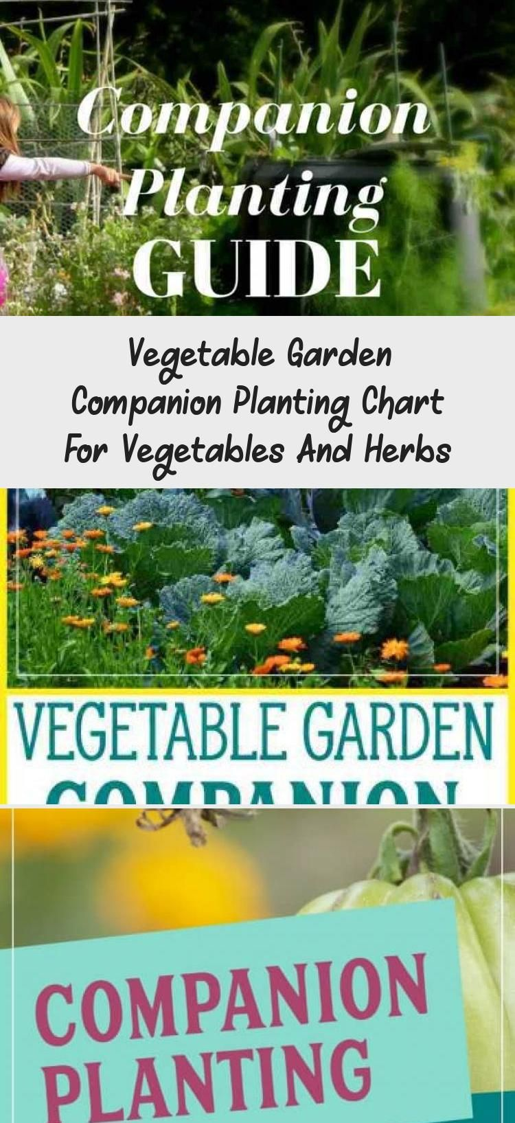 The Year Round Vegetable Gardener Pdf