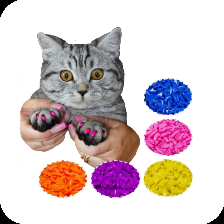 20 Soft Cat Nail Caps mykittycorner Cat nail caps, Cat