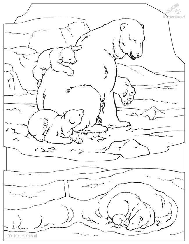 Polar Bear Coloring Page | Polar bear coloring page, Bear ...