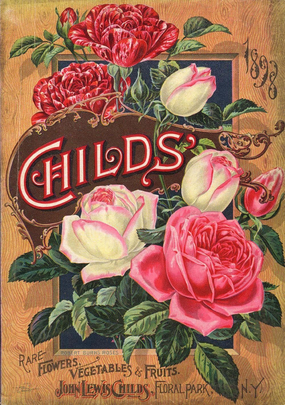 Childs' Rare Flowers, Vegetables & Fruits seed & nursery