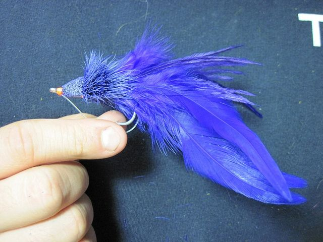 Dahlberg Diver Style Flies We Love These For Bass Pike Muskie Freshwater Dorado And More Spinning Deer Hair Can Be Intim Fly Tying Pike Flies Caddis Flies