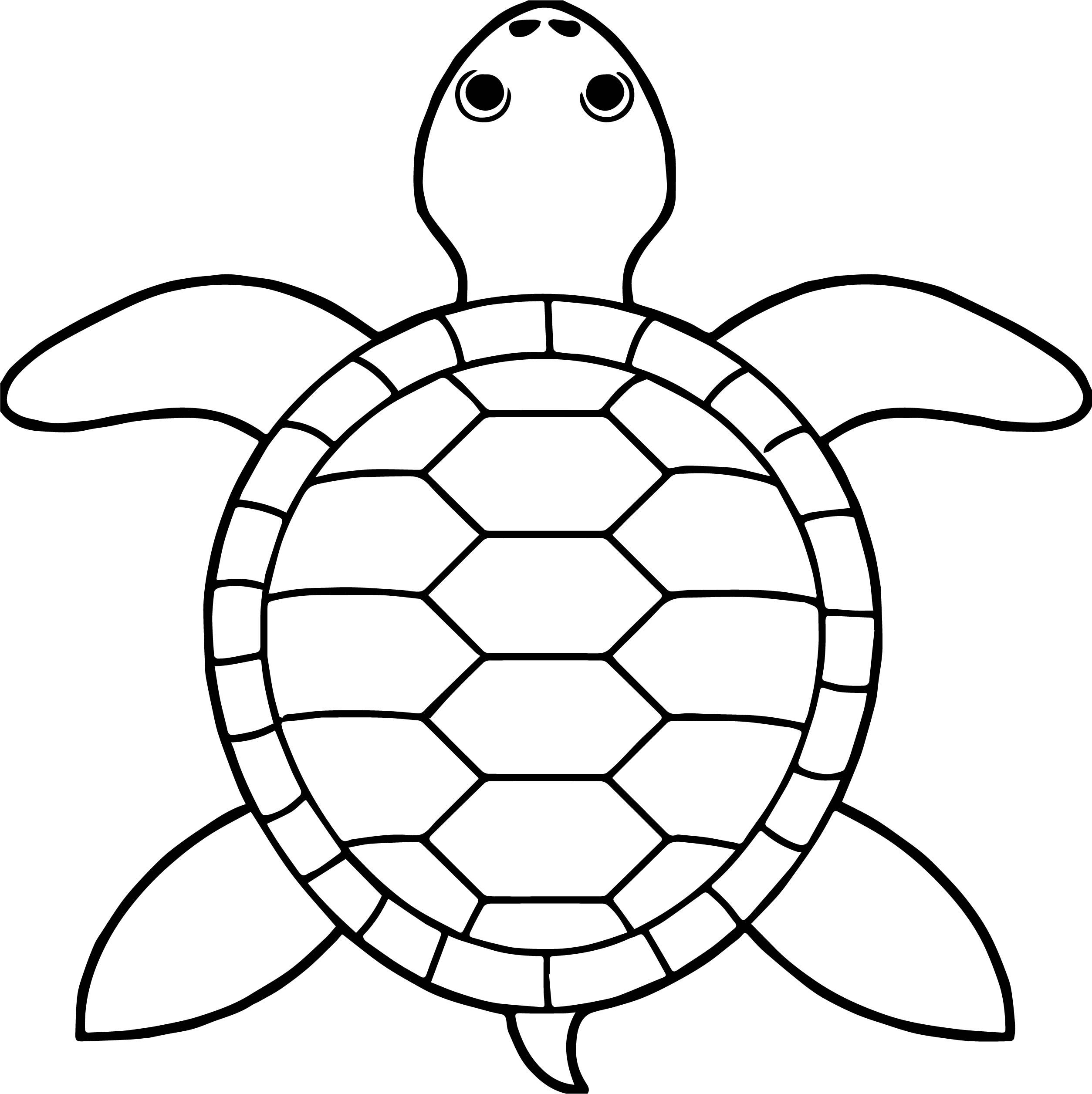 Awesome Tortoise Turtle Top View Coloring Pages Coloring Pages