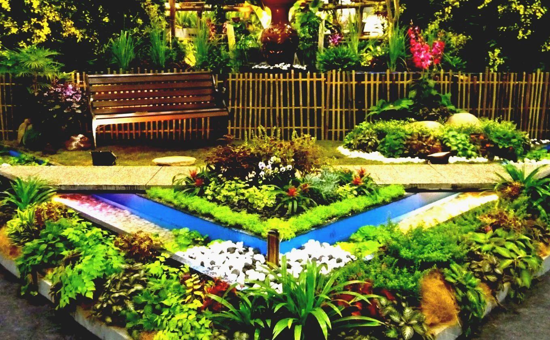 Backyard Garden Plants Ideas | Small garden design, Garden ...