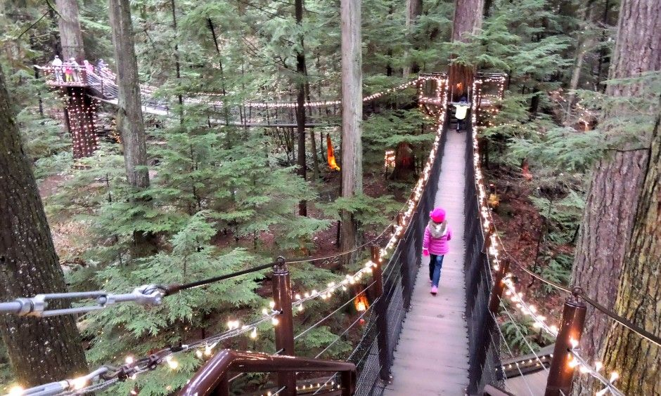 Best Things To Do In Vancouver Bc With Kids Treetops Adventure At Capilano Park
