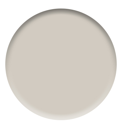 Sherwin Williams - Agreeable Gray - City Farmhouse