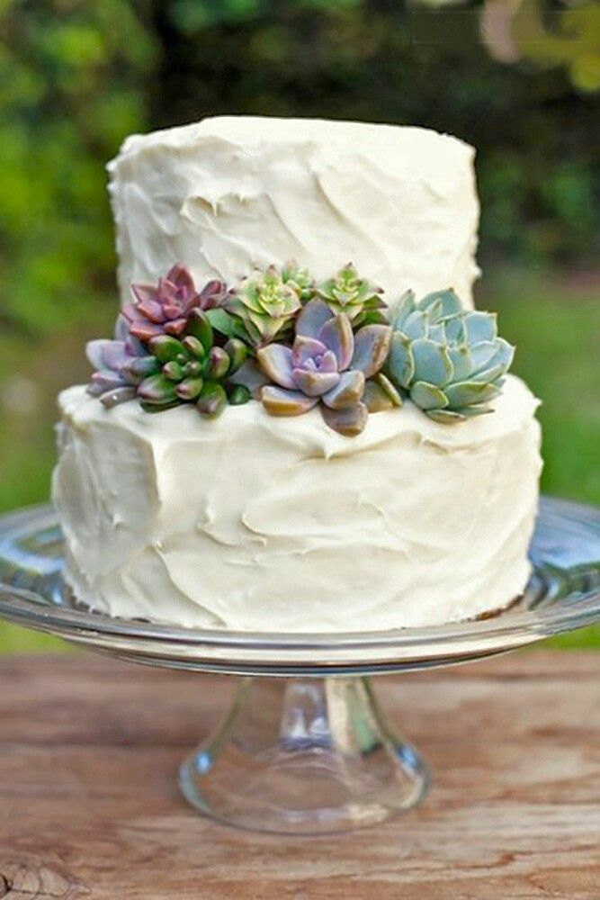 Rustic Succulent Wedding Cake Succulent Wedding Cakes Buttercream Wedding Cake Succulent Cake