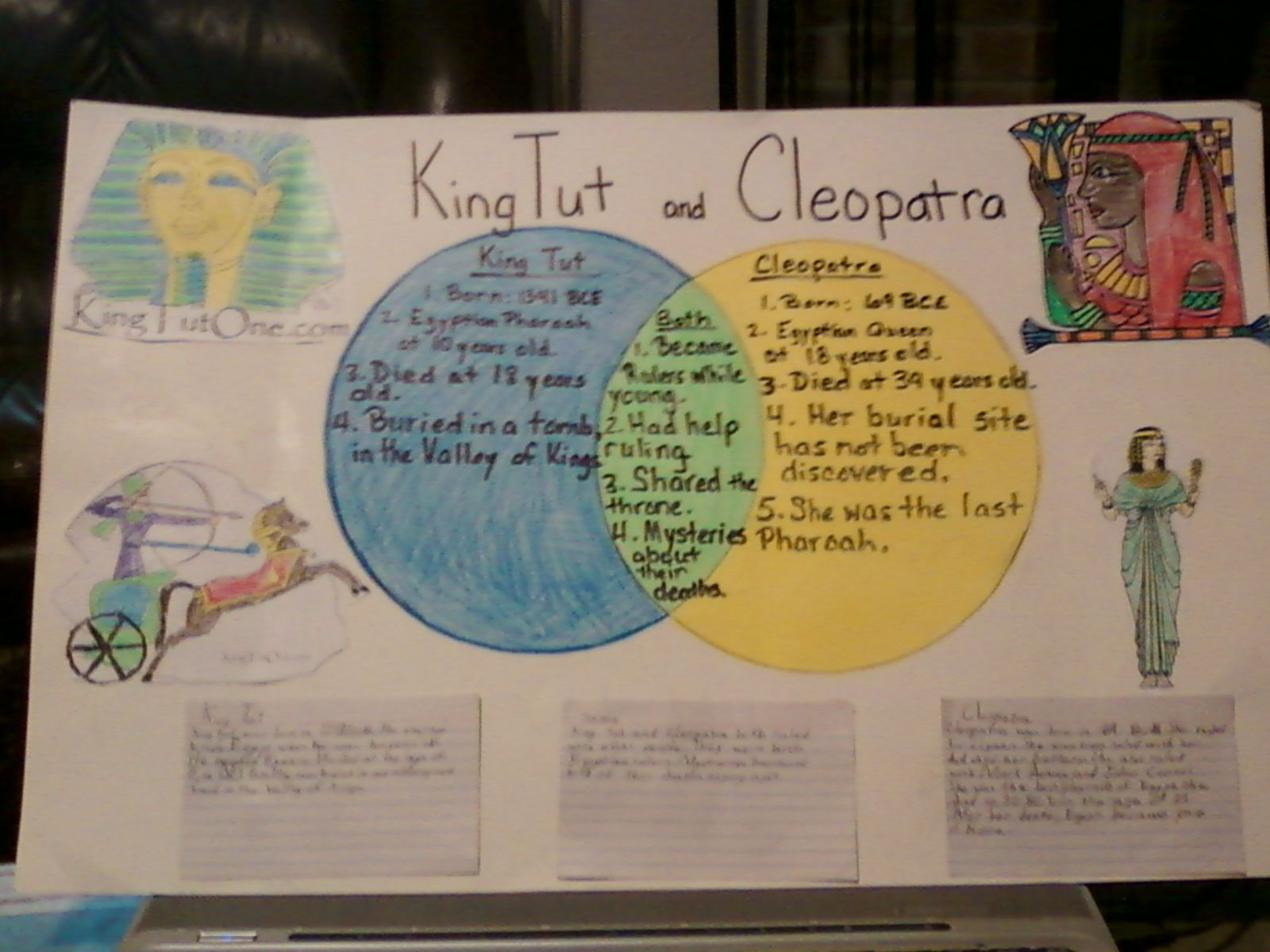 2nd Grade Reading Project Venn Diagram Comparing