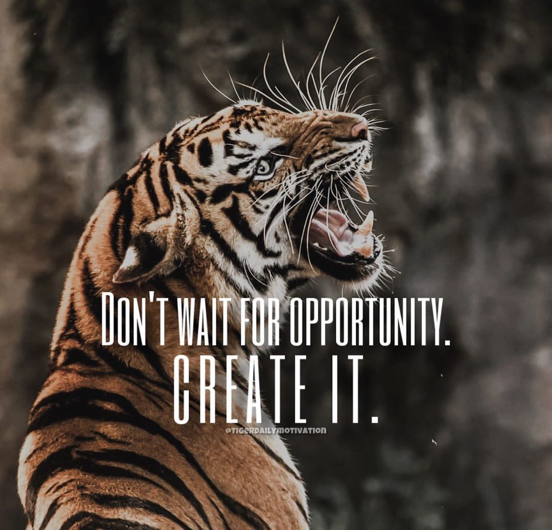 Top Famous Motivational Words Motivational Words Tiger Quotes