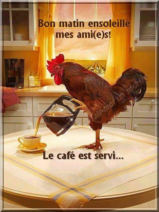 épinglé Par Adid Soul Sur Bonjour Images Drôles Café Du