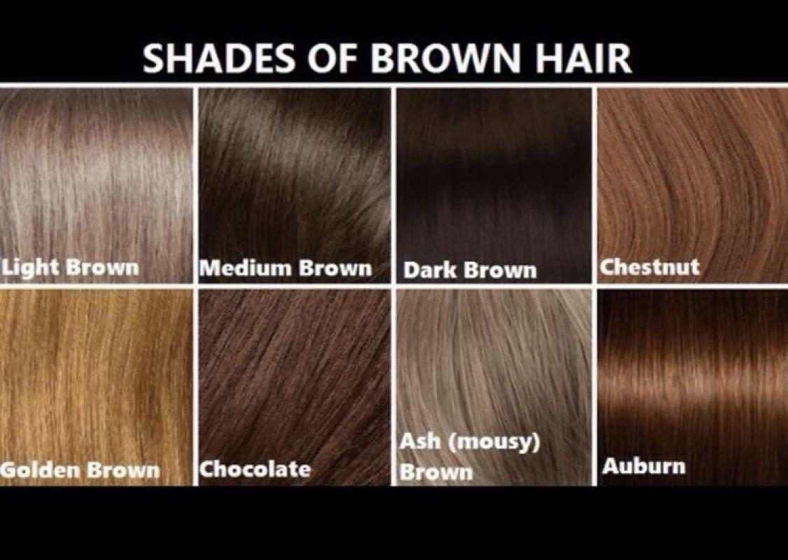 Hair Ideas Image By Sarah Von Paul Brown Hair Shades Brown Hair