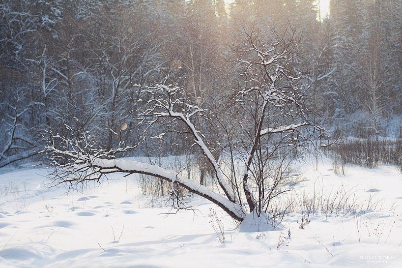 MotleyMoment: Snow Magic