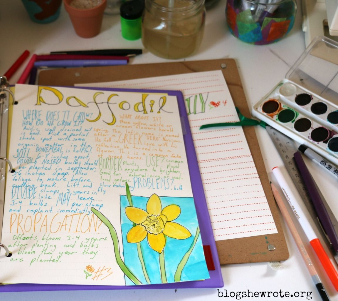 I want to make a family foraging journal of useful plants as a summer homeschool project (like this photo but for useful and edible plants, with our own spin).