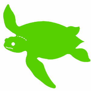 Sea Turtle - Bright Colors