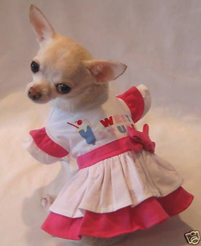 The Games Factory 2 Pet Clothes Chihuahua Clothes Dog Dresses