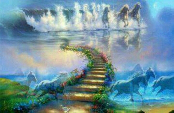 When A Horse Dies He Crosses The Rainbow Bridge And Waits For You