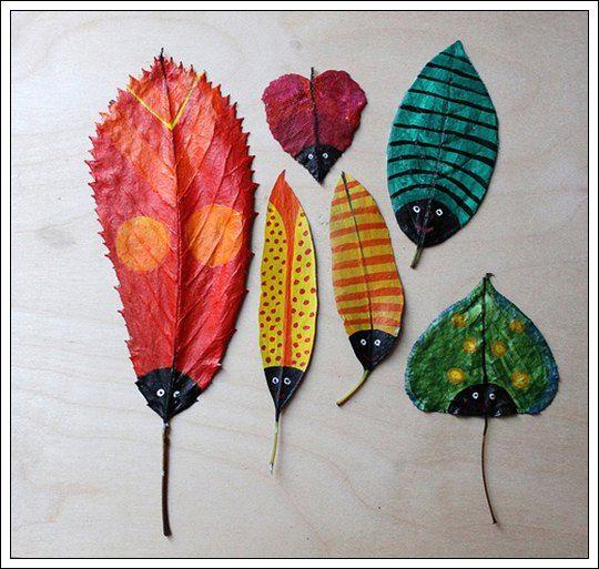 10 Imagenes de hojas de arbol