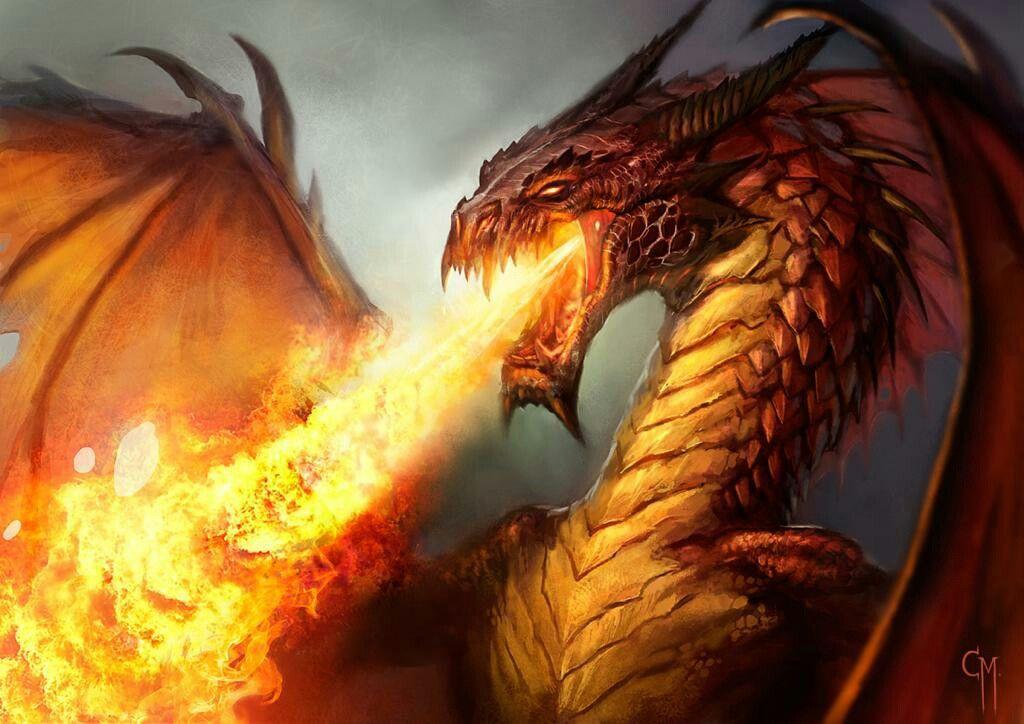 Dragón Escupiendo Fuego Dragones Dibujo De Dragón Cuento De Hadas