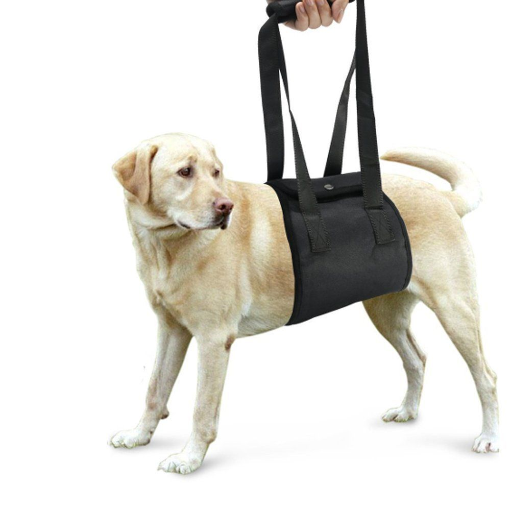 Lalawow Dog Lift Harness Soft Dog Support And Rehabilitation