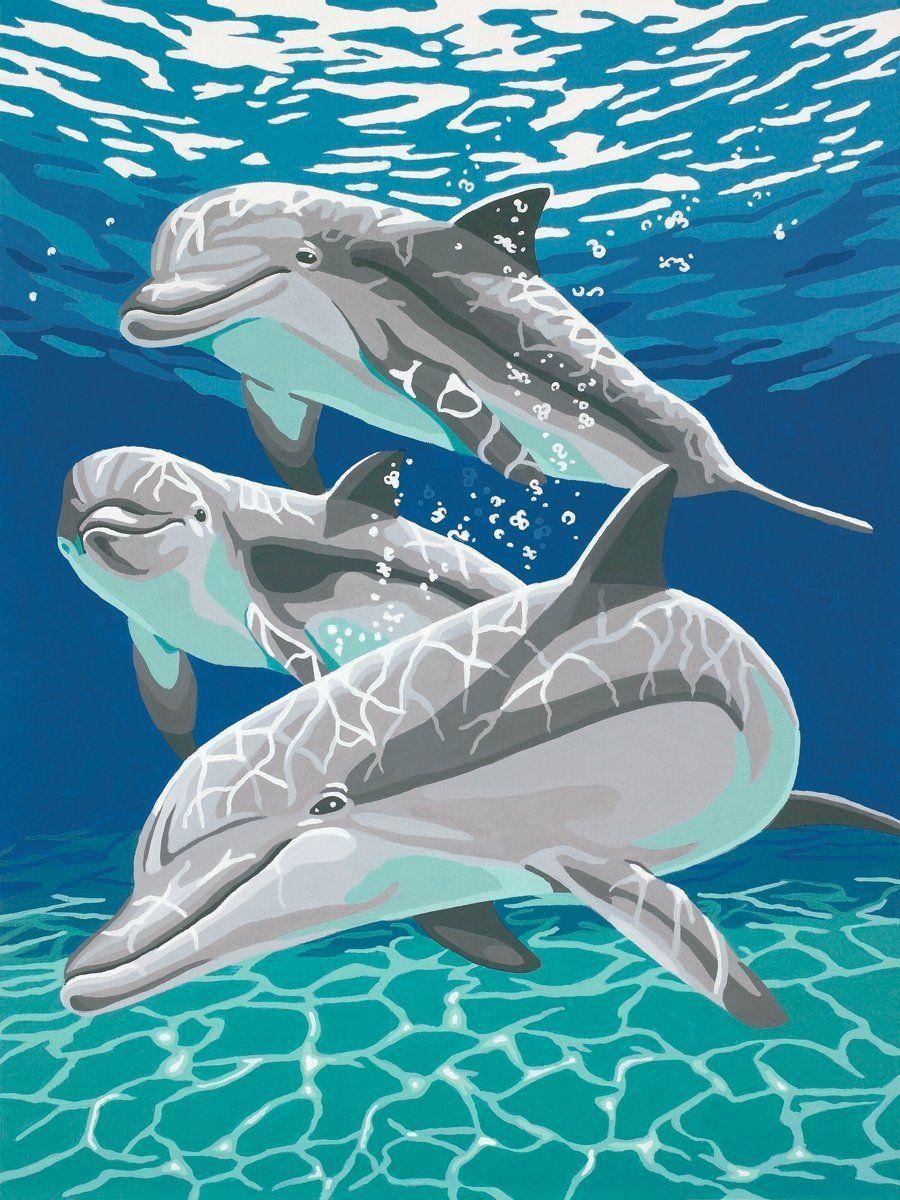 дельфин раскраска: 19 тыс изображений найдено в Яндекс ...