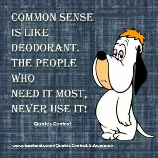 Droopy Meme On Common Sense Funny Quotes Funny Facts Funny