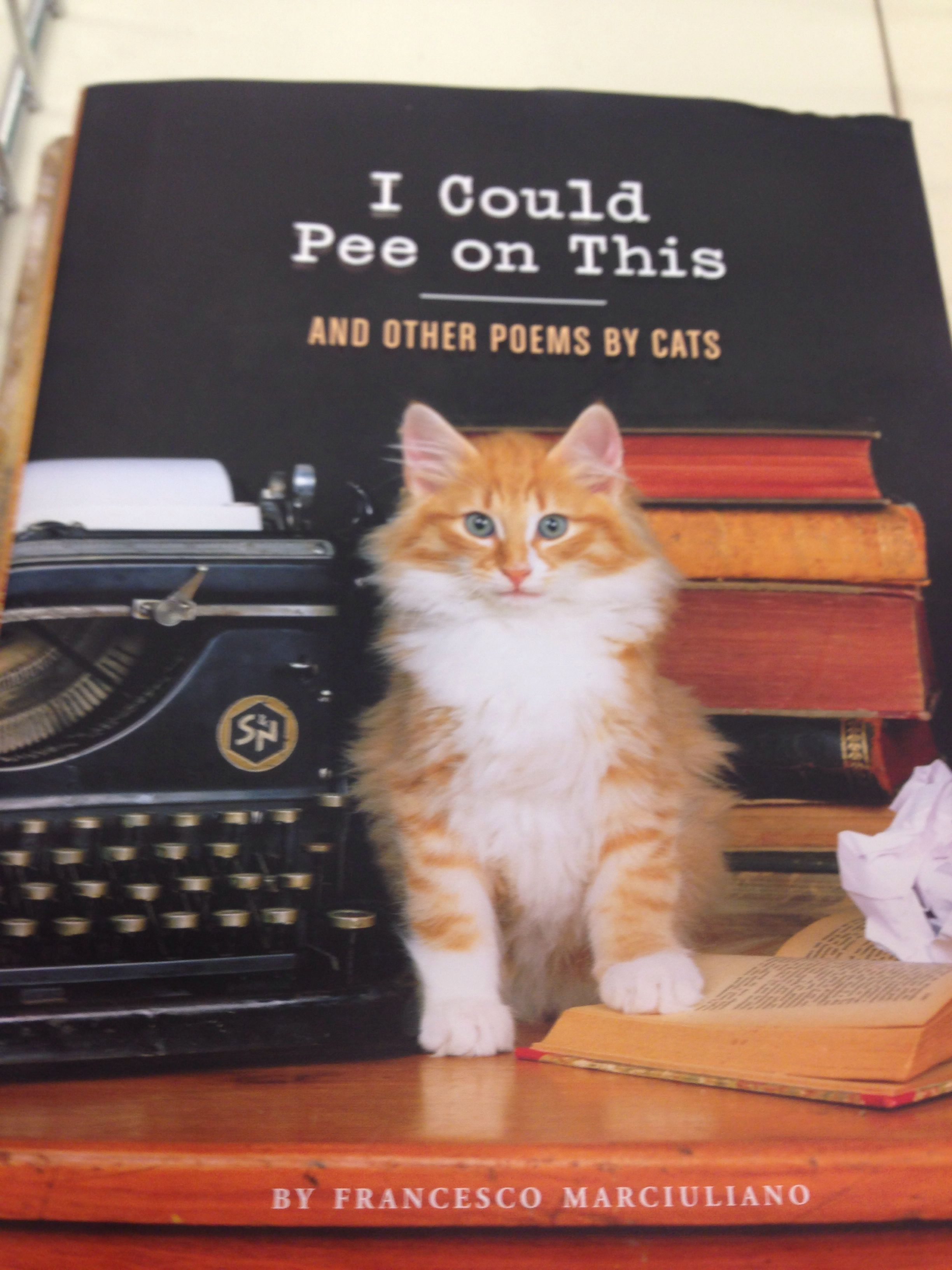 My cat totally ghost wrote this book....she's peed on the