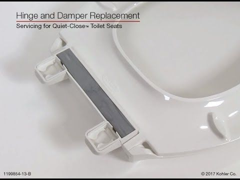 Enjoyable 22 Hinge And Damper Replacement Quiet Close Toilet Seats Pdpeps Interior Chair Design Pdpepsorg