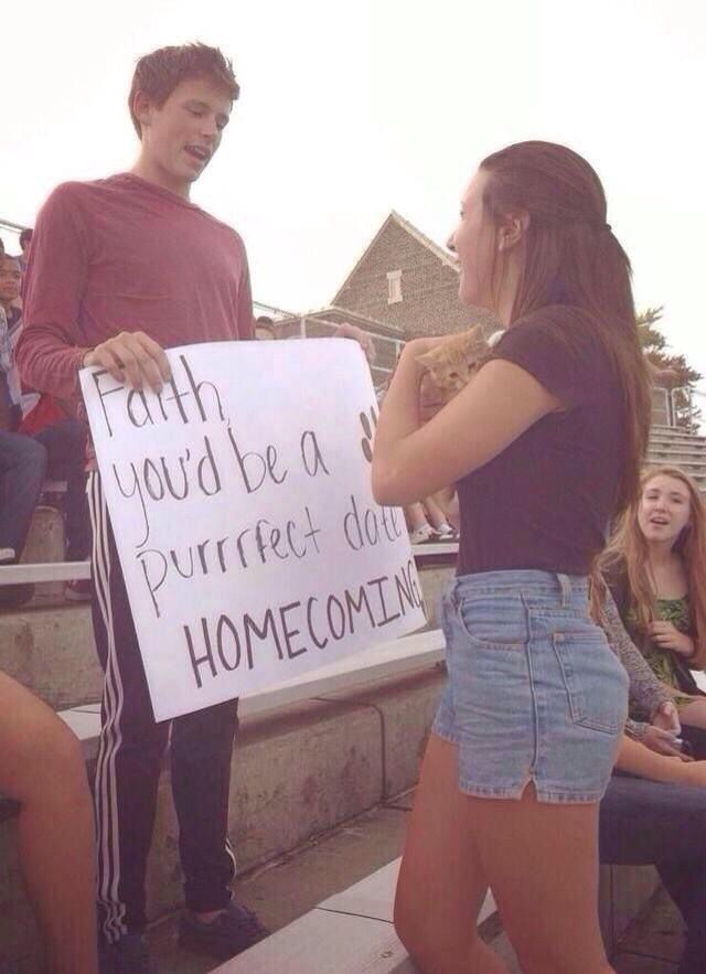Cat homecoming proposal