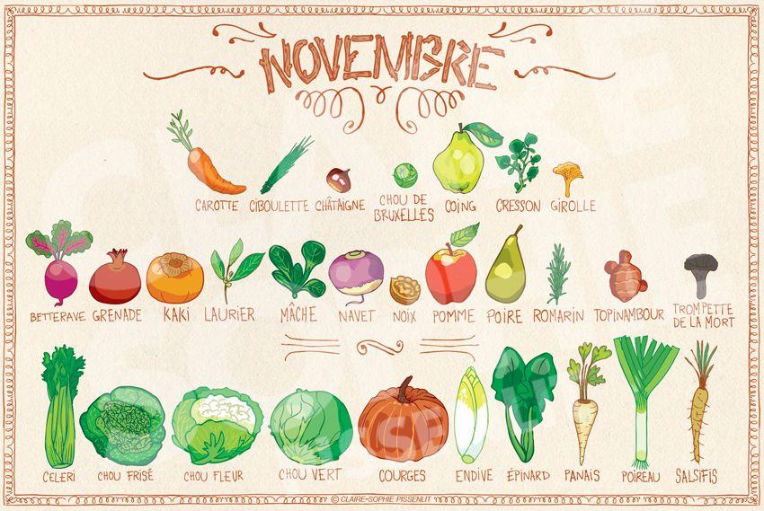 Calendrier de novembre Fruits et légumes de saison