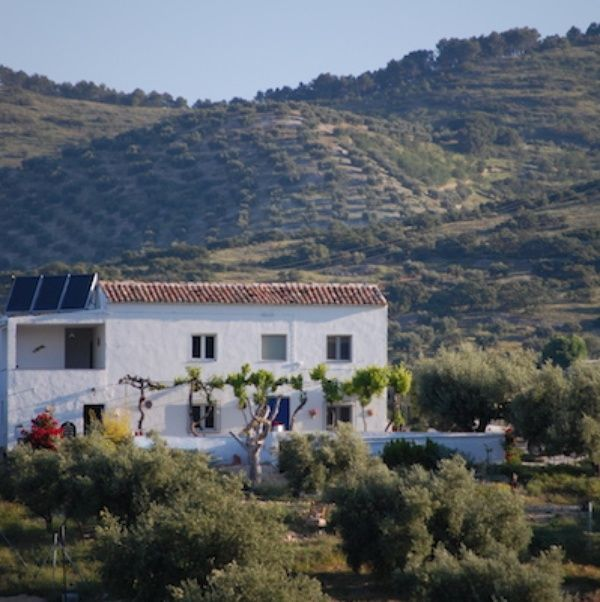 Housesitting Assignment In Jaén, Spain