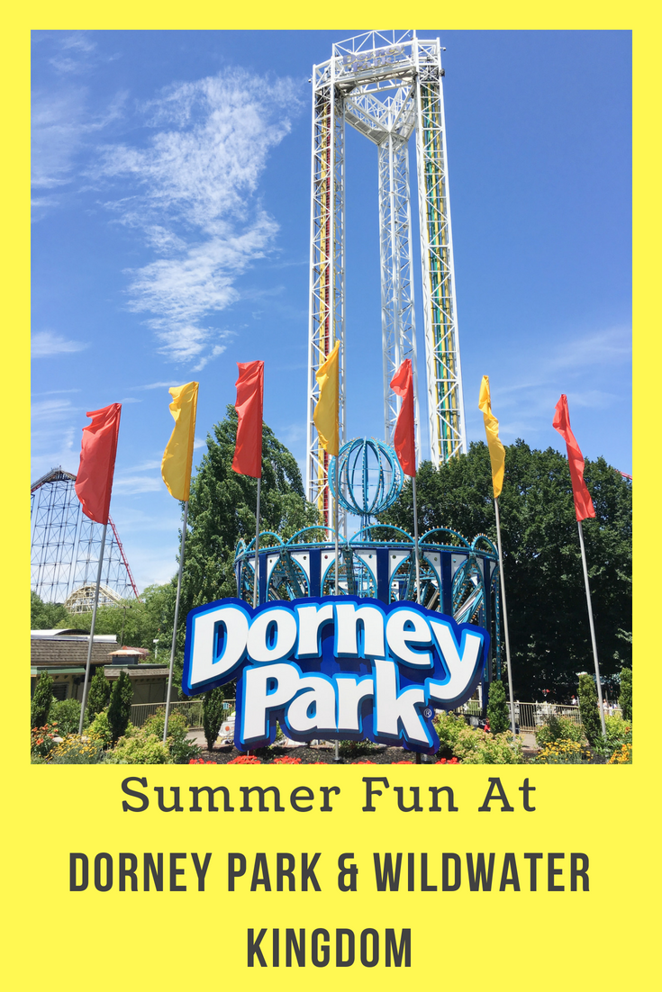 Summer Fun At Dorney Park Wildwater Kingdom Ny Foodie Family
