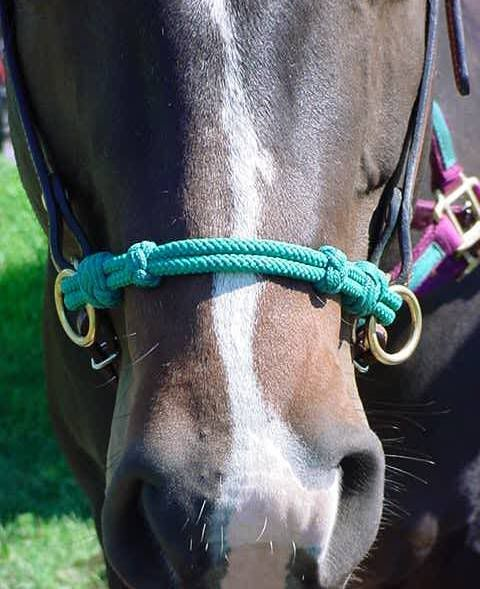 How To Make A Rope Sidepull Horse Tack Horse Halters Horse Tack Diy