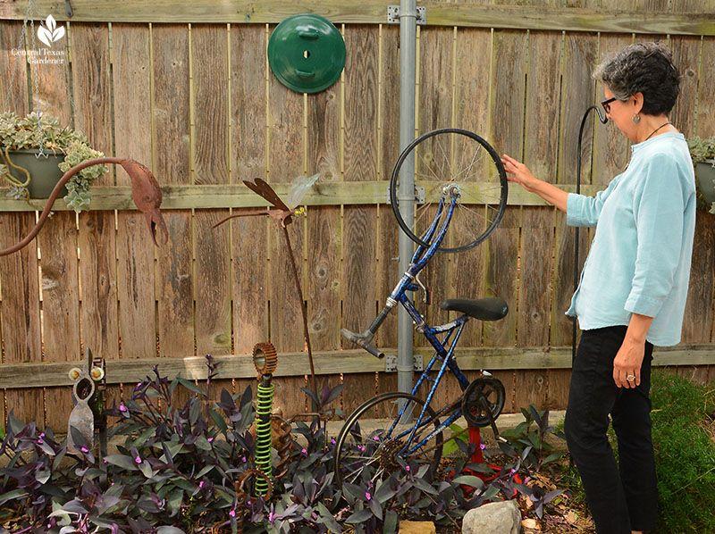 Blog central texas gardener in 2020 live oak trees