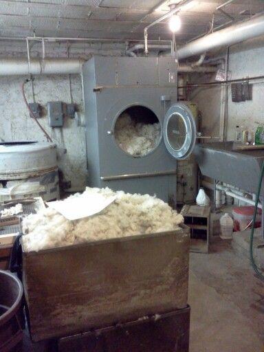 lavage de la laine d 39 agneau lambswool la main ou en machine laver laine pinterest. Black Bedroom Furniture Sets. Home Design Ideas