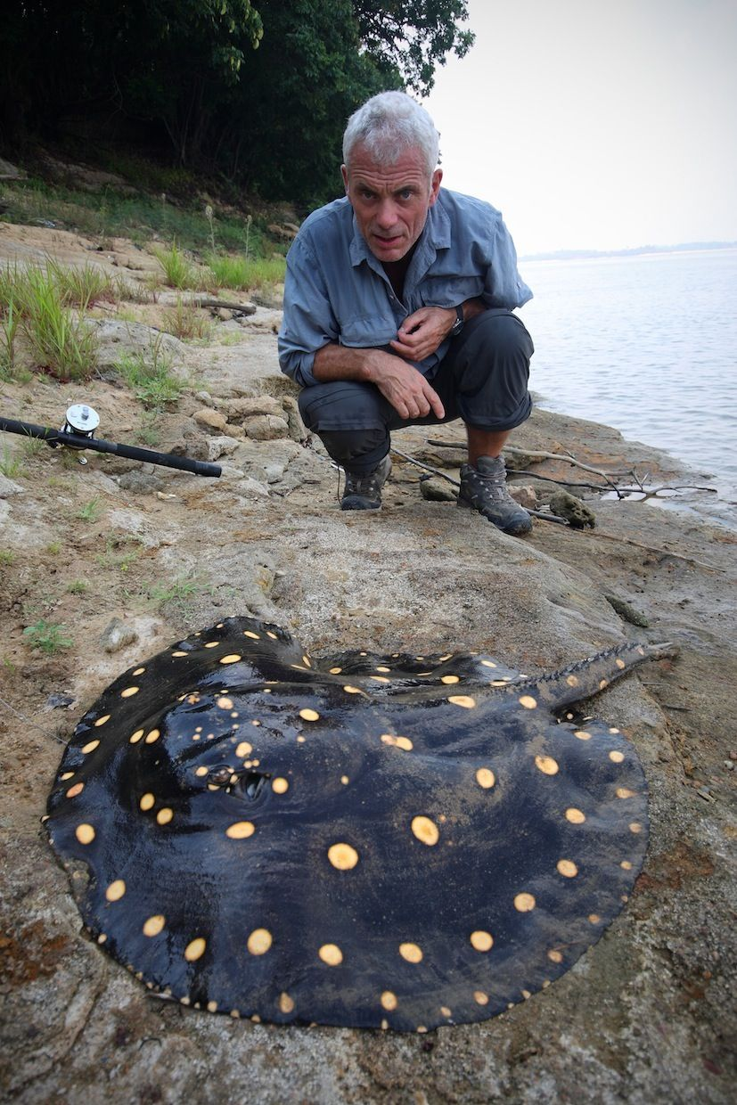 Jeremy Wade Of Quot River Monsters Quot And A Beautiful Stingray