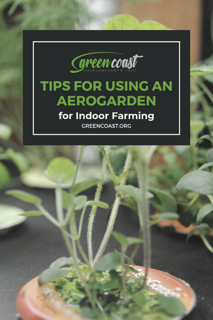 Aerogarden Review What S The Best Indoor Farming Kit 400 x 300