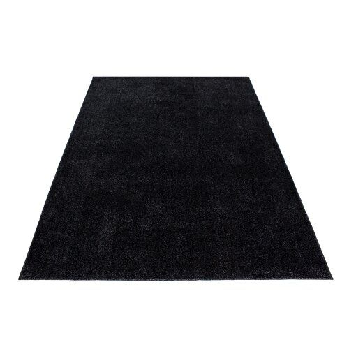 Haight Dark Grey Indoor / Outdoor Rug Brambly Cottage Rug Size: Rectangle 280 x 370cm