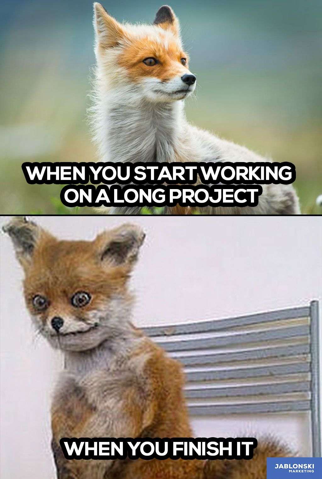 When You Start Working On A Long Project When You Finish It Meme Workmeme Marketing Humor Funny Workoverload Workallday Funny Memes Work Memes Memes